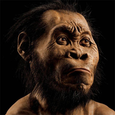 homo-naledi - scoperte scientifiche